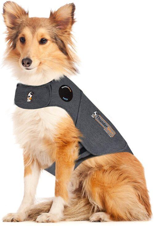 Áo giúp giảm sợ hãi ở chó ThunderShirt
