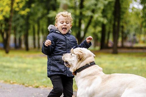 Nỗi sợ trẻ em ở chó