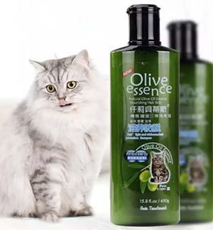 sữa tắm mèo Olive essence