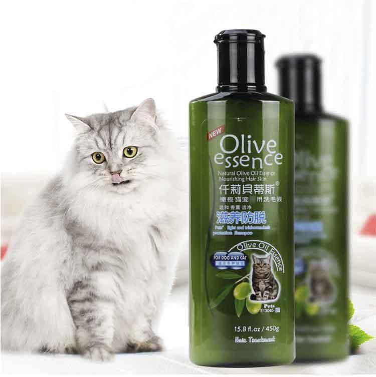 Sữa tắm nào tốt cho mèo