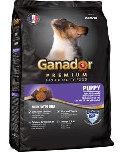 Review thức ăn cho chó con Ganador Premium