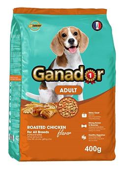 Review thức ăn cho chó lớn Ganador vị gà