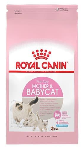 Đánh giá thức ăn cho mèo Royal Canin cho mèo mẹ và mèo sơ sinh