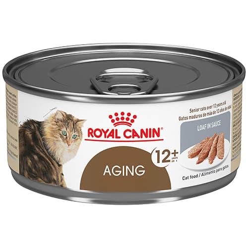 Review thức ăn royal canin cho mèo già