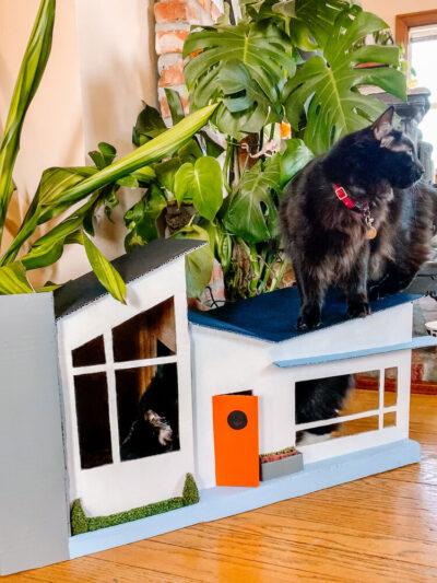 Ảnh mẫu nhà cho mèo bằng thùng carton