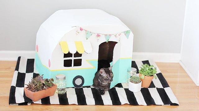 Mẫu nhà thùng giấy cho mèo 5