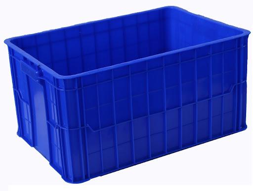 thùng nhựa nuôi gián dubia
